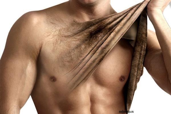 Рисунки на груди. Стрижка мужской груди в домашнихусловиях