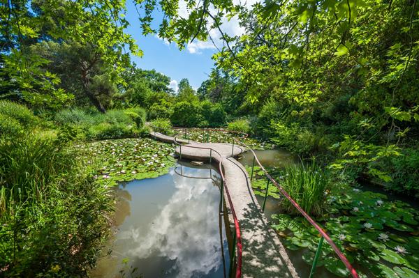 Izjuminka Forosskogo parka