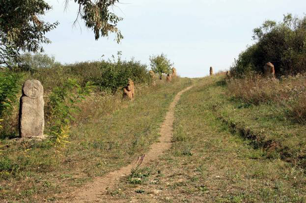 Homutovskaja step'
